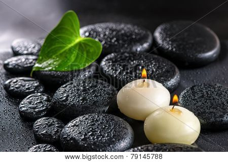 Beautiful Spa Still Life Of Green Leaf Calla Lily And Candles On Zen Basalt Stones With Dew, Closeup