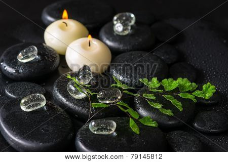 Beautiful Spa Concept Of Green Twig Fern, Ice And Candles On Zen Basalt Stones With Dew, Closeup