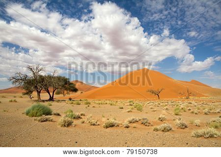 Sossusvlei Desert, Dune 45, Namibia
