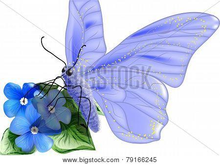 Butterfly Pollen