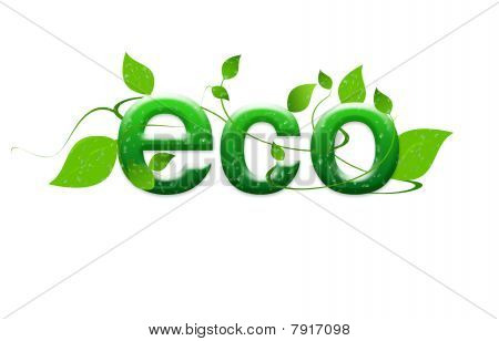 Ecology and sustainable development