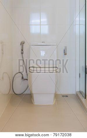 Modern White Toilet Bowl In Bathroom