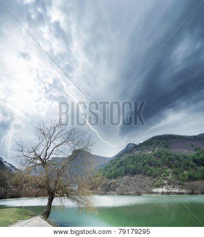 nature of the Crimea