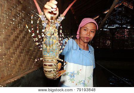Pacitan lobster