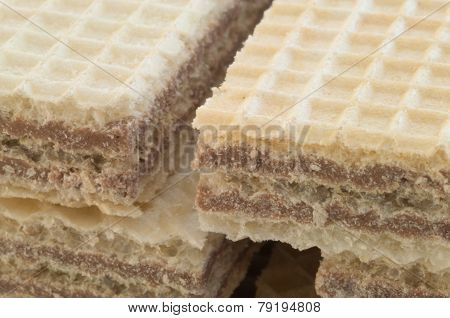 Beautiful Macro Of Hazelnuts Wafer