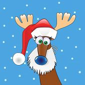 image of rudolph  - Funny  Christmas reindeer in Santa - JPG