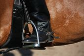stock photo of girth  - Close up of rider leg with spur in stirrup on brown horse - JPG