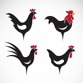 stock photo of chicken  - Vector image of an chicken design on white background - JPG