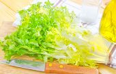 stock photo of escarole  - fresh salad on board and on a table - JPG
