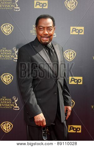 LOS ANGELES - APR 26:  James Reynolds at the 2015 Daytime Emmy Awards at the Warner Brothers Studio Lot on April 26, 2015 in Burbank, CA