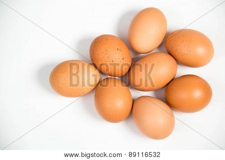 Shall Raw Eggs On White Background.