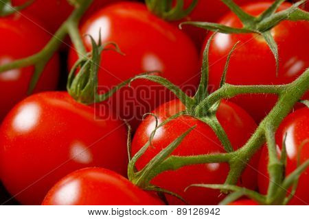 detail of cherry tomatoes