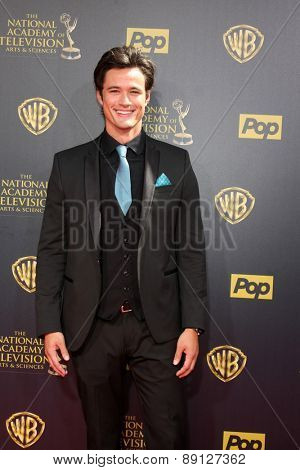 LOS ANGELES - APR 26:  Matthew Atkinson at the 2015 Daytime Emmy Awards at the Warner Brothers Studio Lot on April 26, 2015 in Burbank, CA