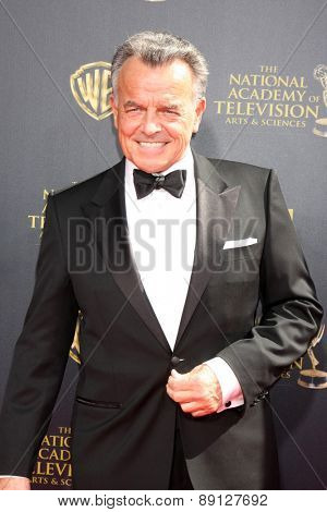 LOS ANGELES - APR 26:  Ray Wise at the 2015 Daytime Emmy Awards at the Warner Brothers Studio Lot on April 26, 2015 in Burbank, CA