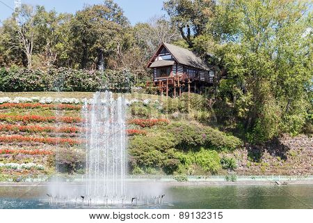 Wooden House On The Hill Near The Pond