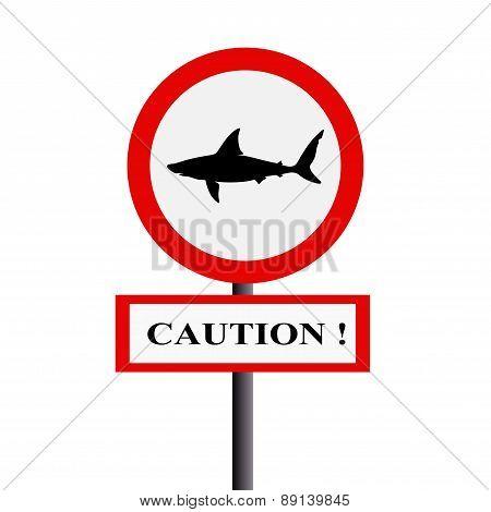 Caution Shark