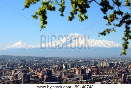 Mount Ararat And Yerevan City.