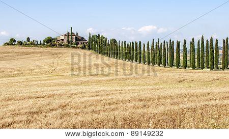 Farmhouse In Tuscany Countryside