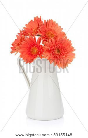 Orange gerbera flowers in pitcher. Isolated on white background