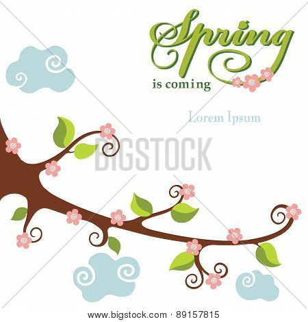 Spring  flowering branch background