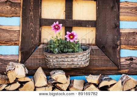 Wooden Window With Flowers