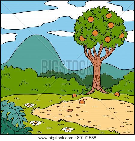 Vector Illustration, Natural Background (glade And Orange Tree)