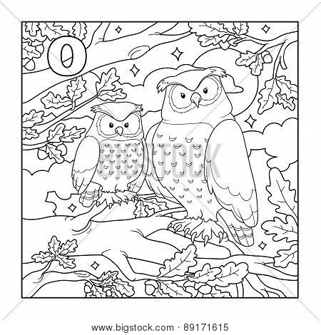 Coloring Book (owl), Colorless Illustration (letter O)