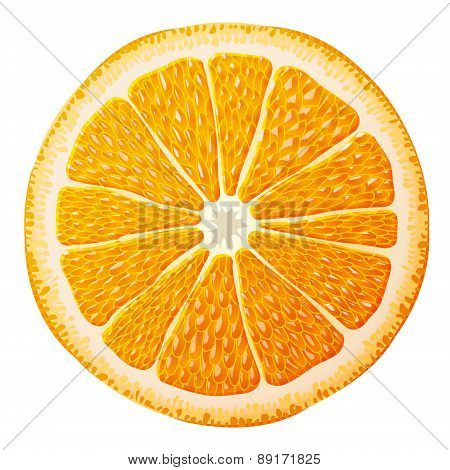 Orange Slice Close Up
