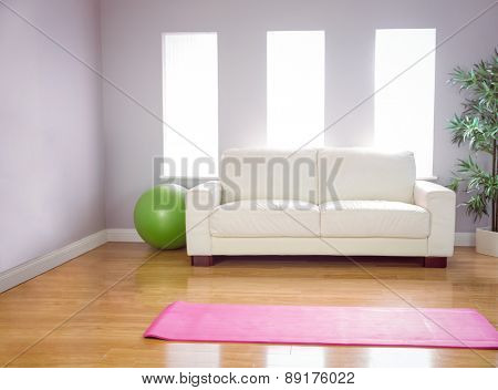 Exercise mat and ball at home in the living room