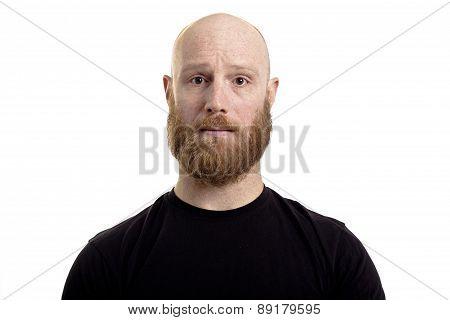 sad bald man red beard isolated on white background