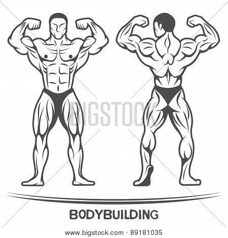 Bodybuilder. On isolated background.