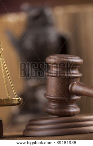 Law concept, owl in a judge gavel concept