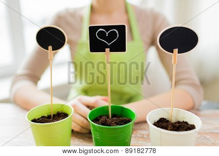 people, gardening, seeding, valentines day and holiday concept - close up of woman over pots with soil and signs