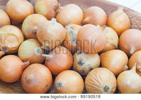 Gold onion