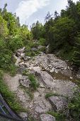 foto of ravines  - The Homole Ravine in Pieniny mountains Poland - JPG