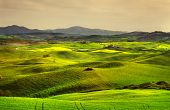 Постер, плакат: Tuscany Spring Rolling Hills On Sunset Volterra Rural Landscape Green Fields And Farmland Italy