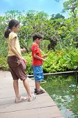stock photo of koi fish  - Young boy with sister feeding the koi carp fish in the ornamental pond - JPG