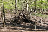 pic of wigwams  - A poorly constructed wigwam in a forest - JPG