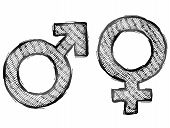 image of libido  - Sketch of man and woman signs in doodle style - JPG
