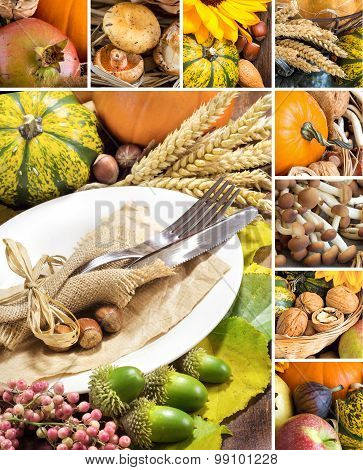 Collage With Rustic Autumn Table Setting