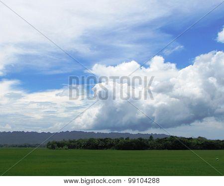 Landscape south of Kebumen.......