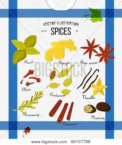 Set of spices in flat style. Vector set of kitchen spices and herbs collection.