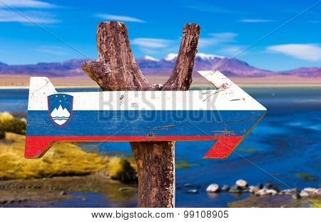 Slovenia Flag wooden sign with river on background
