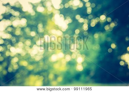 Vintage Photo Of Summertime Bokeh Background