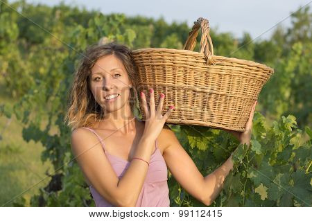 Young Girl In Grape Harvest With Big Wicker Basket For Storing Grapes