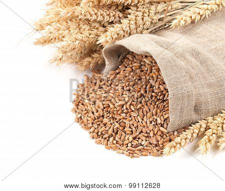 Wheat In A Sack And Ears On A White Background Isolated