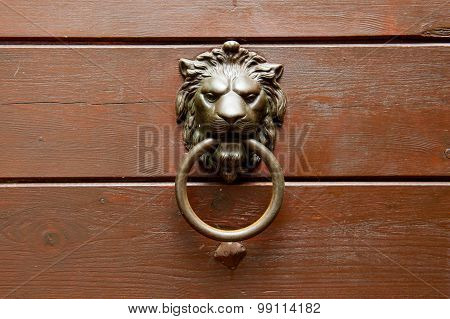Bronze Lion Head Handle On Wooden Door