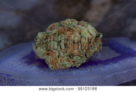 Medibud medicinal medical marijuana