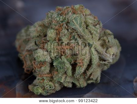 Closeup macro of medicinal marijuana