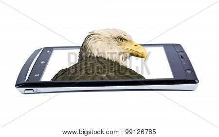 Bald Eagle On Display Smartphone. Collage